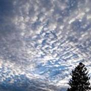 A Mackerel Sky Poster