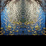 A Mirror Image Of Sparkling Water Reflection Poster
