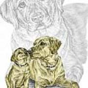 A Mothers Love - Labrador Dog Print Color Tinted Poster
