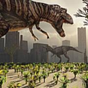 A Pair Of Tyrannosaurus Rex Explore Poster