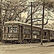 A Streetcar Named St. Charles Sepia Poster