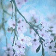 A Subtle Spring Poster