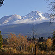 A View Toward Mt Shasta In Autumn Poster