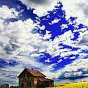 Abandoned Farmhouse In A Canola Field Poster