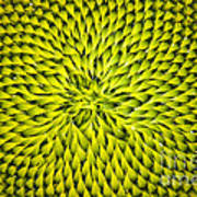 Abstract Sunflower Pattern Poster