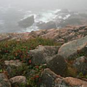 Acadia National Park Foggy Coast Poster by Chris Hill