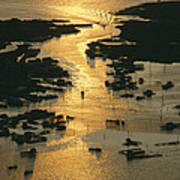Aerial Shot, Tangier Island, Chesapeake Poster