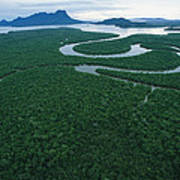 Aerial View Of The Salak River. Mount Poster