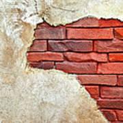 Africa In Bricks Poster