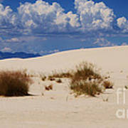 Afternoon At White Sands National Monument Poster