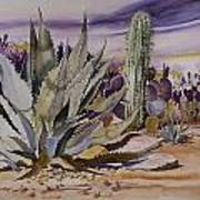 Agave And Purple Opuntia Poster