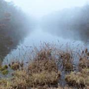 Alcotts Pond In Fog Poster