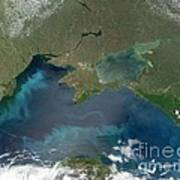Algal Blooms In The Black Sea Poster