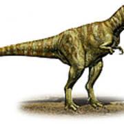 Alioramus Remotus, A Prehistoric Era Poster