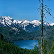 Alp See Lake In Bavaria Germany Poster