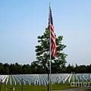 American Flag At Soldiers Graves Poster