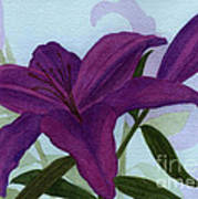 Amethyst Lily Poster by Vikki Wicks
