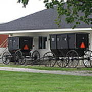 Amish Buggies Parked Poster