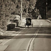 Amish Buggy - Lancaster County Pa Poster
