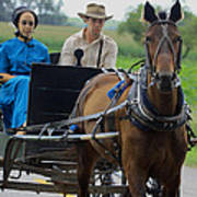 Amish Buggy Ride Poster