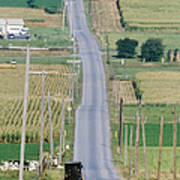 Amish Horse And Buggy On Country Road Poster