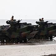 Amphibious Assault Vehicles Land Ashore Poster