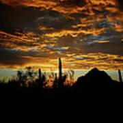 An Arizona Desert Sunset  Poster