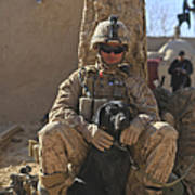 An Ied Detection Dog Keeps His Dog Poster