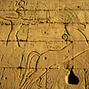 Ancient Egyptian Carving, Ramesseum Temple, Luxor Poster