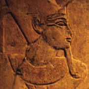 Ancient Egyptian Carving, Temple Of Luxor, Egypt Poster
