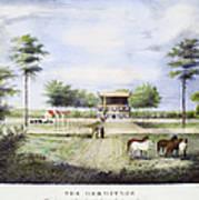 Andrew Jackson: Hermitage Poster