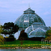 Anna Scripps Whitcomb Conservatory Poster