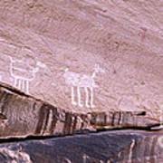 Antelope House Petroglyphs Poster