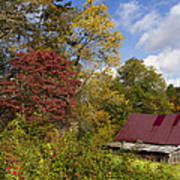 Appalachian Autumn Poster