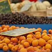 Apricot Season Poster by Georgia Fowler