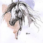 Arabian Horse Ink Drawing 1 Poster