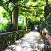 Arbor Path In Ravello Poster