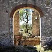 Archway At Pozos Poster