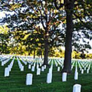 Arlington Cemetery Graves Poster
