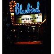 At The Bluebird Poster