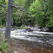 Ausable River 5252 Poster