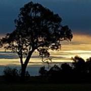 Aussie Silhouette Poster