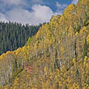 Autumn Aspens San Juan Mountains Poster