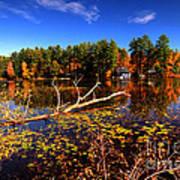 Autumn At Bomoseen Lake  Poster