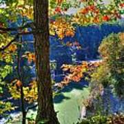 Autumn At Letchworth State Park Poster