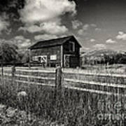 Autumn Barn Black And White Poster
