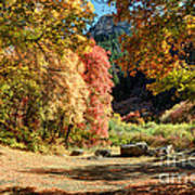 Autumn Campground In Blacksmith Fork Canyon - Utah Poster