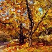Autumn Colors 3 Poster