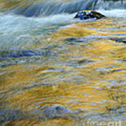 Autumn Colors Reflected In Stream Poster