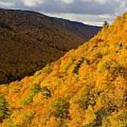 Autumn Colours At North Mountain Poster